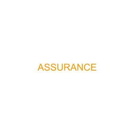 Assurance Vol sec